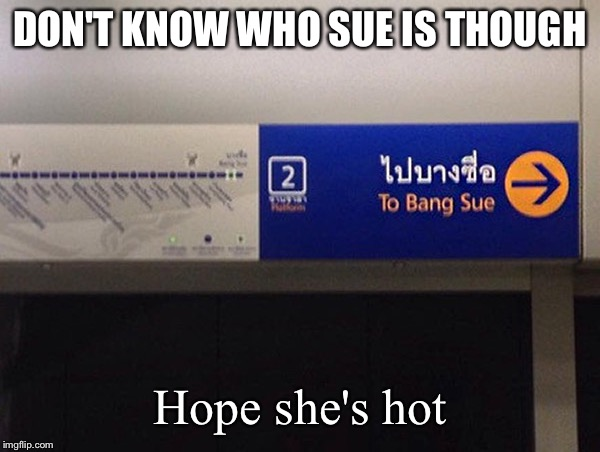 When signs are trying to gangbang | DON'T KNOW WHO SUE IS THOUGH Hope she's hot | image tagged in gangbang,memes,funny,funny signs,bang,chicks | made w/ Imgflip meme maker