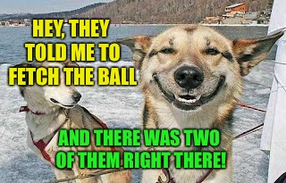 HEY, THEY TOLD ME TO FETCH THE BALL AND THERE WAS TWO OF THEM RIGHT THERE! | made w/ Imgflip meme maker