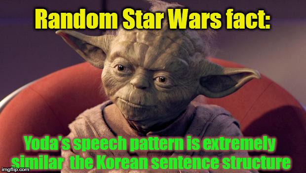 yoda wisdom imgflip