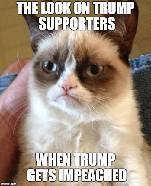 The future! | THE LOOK ON TRUMP SUPPORTERS WHEN TRUMP GETS IMPEACHED | image tagged in memes,grumpy cat,political meme,trump | made w/ Imgflip meme maker