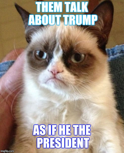 Grumpy Cat Meme | THEM TALK ABOUT TRUMP AS IF HE THE PRESIDENT | image tagged in memes,grumpy cat | made w/ Imgflip meme maker