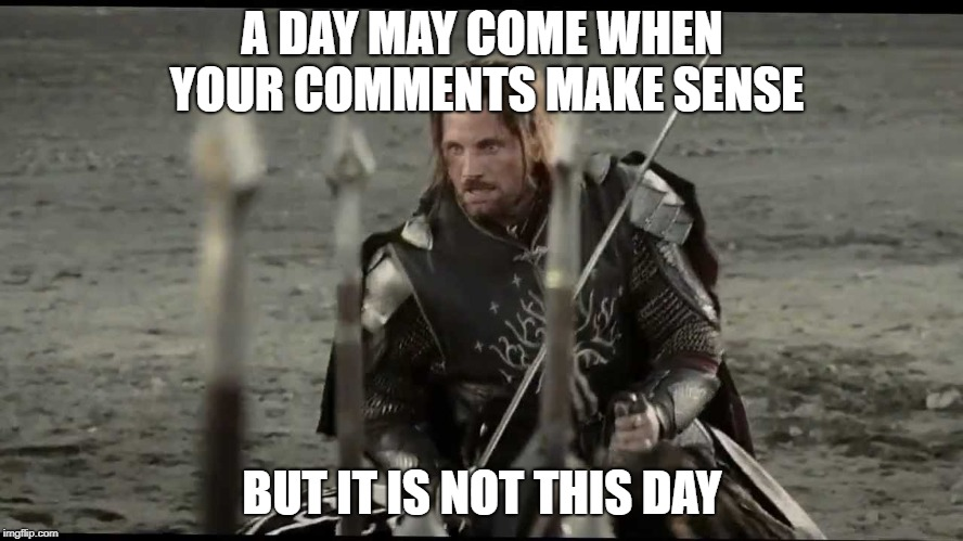 Aragorn |  A DAY MAY COME WHEN YOUR COMMENTS MAKE SENSE; BUT IT IS NOT THIS DAY | image tagged in aragorn | made w/ Imgflip meme maker