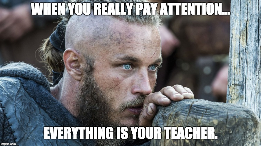 WHEN YOU REALLY PAY ATTENTION... EVERYTHING IS YOUR TEACHER. | image tagged in vikings | made w/ Imgflip meme maker