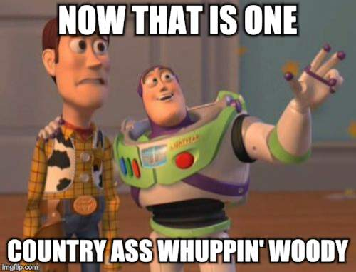 X, X Everywhere Meme | NOW THAT IS ONE COUNTRY ASS WHUPPIN' WOODY | image tagged in memes,x,x everywhere,x x everywhere | made w/ Imgflip meme maker