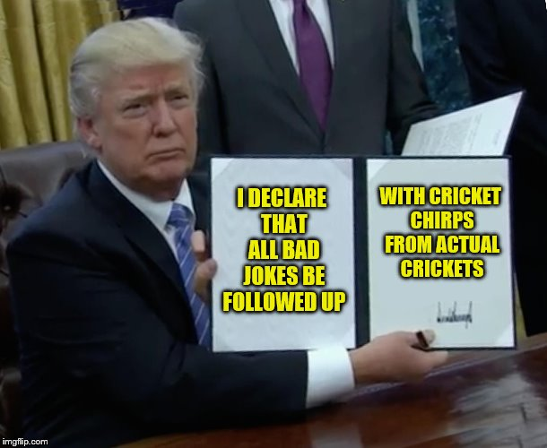 Looks like I'm carrying around a pocketful of crickets. | I DECLARE THAT ALL BAD JOKES BE FOLLOWED UP WITH CRICKET CHIRPS FROM ACTUAL CRICKETS | image tagged in memes,trump bill signing,bad jokes,crickets | made w/ Imgflip meme maker