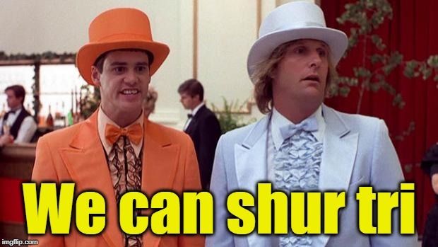Dumb & Dumber | We can shur tri | image tagged in dumb  dumber | made w/ Imgflip meme maker