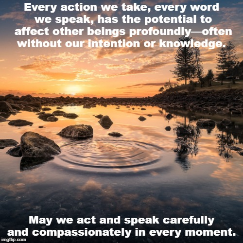 Ripples | Every action we take, every word we speak, has the potential to affect other beings profoundly—often without our intention or knowledge. May | image tagged in meme,compassion,words,actions,karma | made w/ Imgflip meme maker