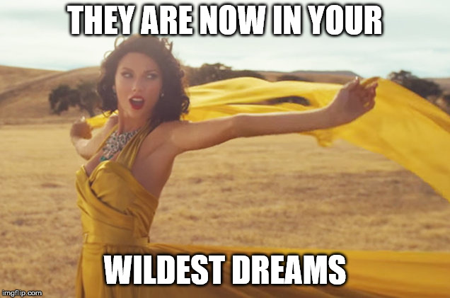Wildest Dreams Taylor | THEY ARE NOW IN YOUR WILDEST DREAMS | image tagged in wildest dreams taylor | made w/ Imgflip meme maker