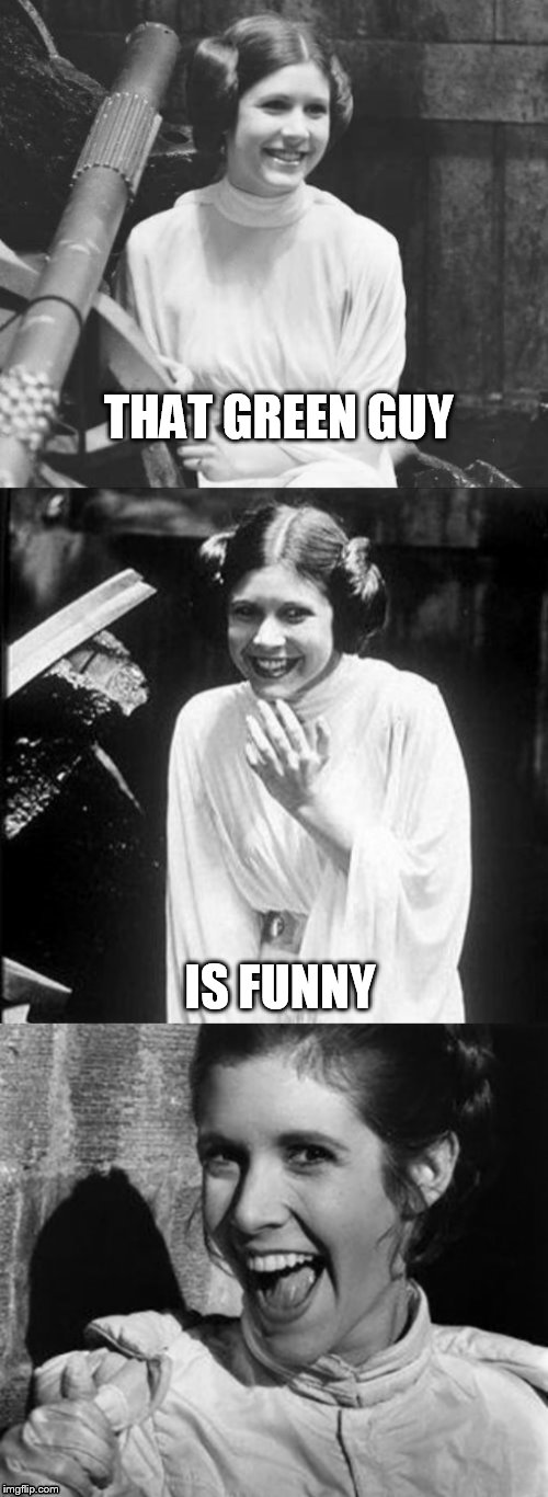 Princess Leia Puns | THAT GREEN GUY IS FUNNY | image tagged in princess leia puns | made w/ Imgflip meme maker