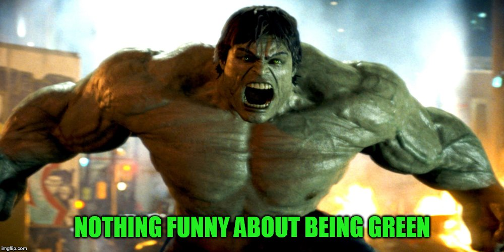 NOTHING FUNNY ABOUT BEING GREEN | made w/ Imgflip meme maker