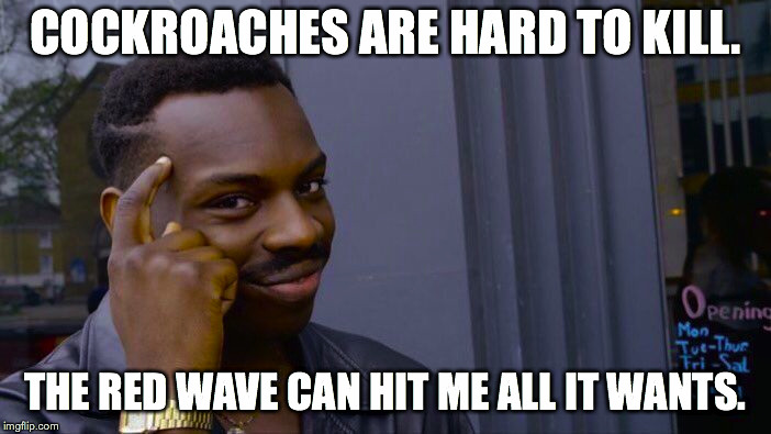 Roll Safe Think About It Meme | COCKROACHES ARE HARD TO KILL. THE RED WAVE CAN HIT ME ALL IT WANTS. | image tagged in memes,roll safe think about it | made w/ Imgflip meme maker