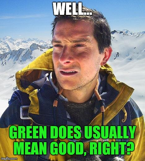WELL... GREEN DOES USUALLY MEAN GOOD, RIGHT? | made w/ Imgflip meme maker