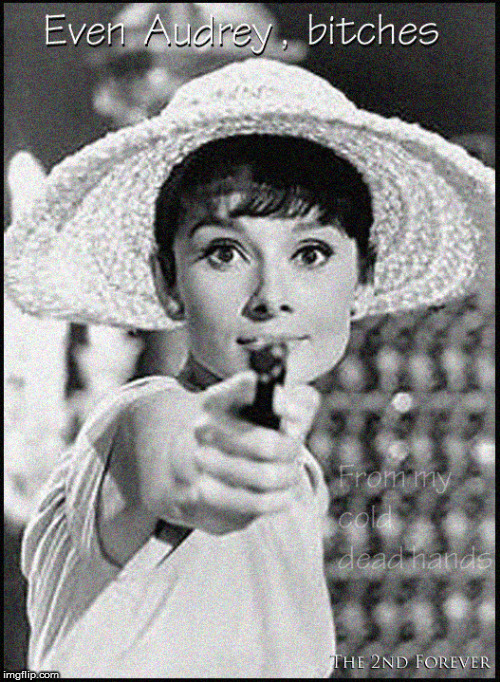 Even Audrey Hepburn... | image tagged in audrey hepburn,girls with guns,2nd amendment,current events,politics lol,babes | made w/ Imgflip meme maker