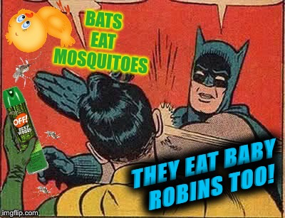 BATS EAT MOSQUITOES THEY EAT BABY ROBINS TOO! | made w/ Imgflip meme maker