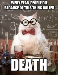 SMART CAT | EVERY YEAR, PEOPLE DIE BECAUSE OF THIS THING CALLED DEATH | image tagged in smart cat | made w/ Imgflip meme maker