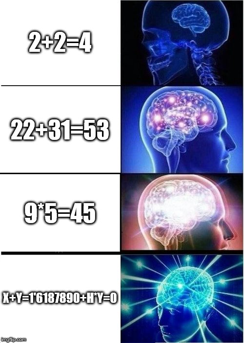 the evolution of the brain | 2+2=4 22+31=53 9*5=45 X+Y=1'6187890+H*Y=0 | image tagged in memes,expanding brain | made w/ Imgflip meme maker