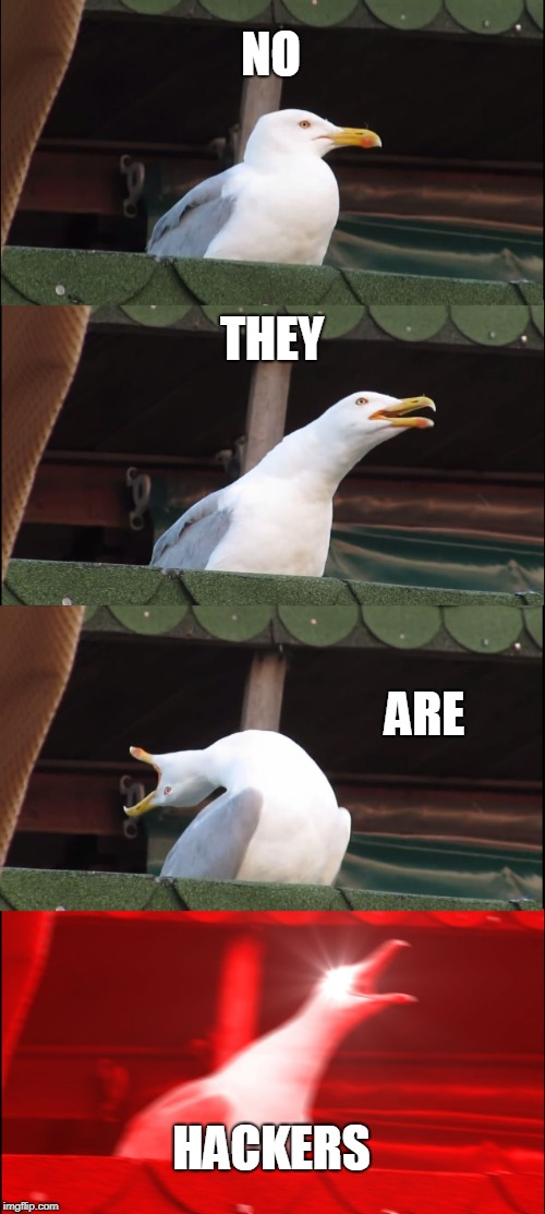 Inhaling Seagull Meme | NO THEY ARE HACKERS | image tagged in memes,inhaling seagull | made w/ Imgflip meme maker