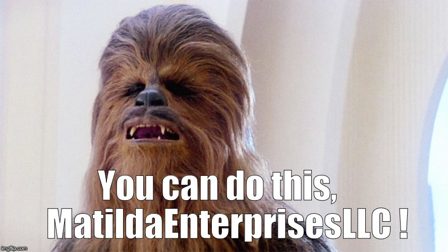 Chewbacca | You can do this,   MatildaEnterprisesLLC ! | image tagged in chewbacca | made w/ Imgflip meme maker