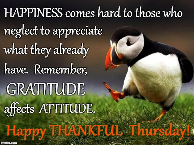 Happy THANKFUL Thursday | HAPPINESS comes hard to those who Happy THANKFUL  Thursday! neglect to appreciate what they already have.  Remember, GRATITUDE affects  ATTI | image tagged in happiness,gratitude,attitude,appreciate | made w/ Imgflip meme maker