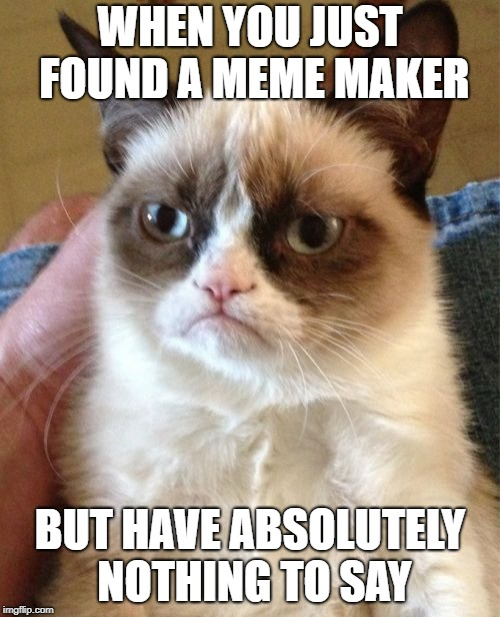 Grumpy Cat Meme | WHEN YOU JUST FOUND A MEME MAKER BUT HAVE ABSOLUTELY NOTHING TO SAY | image tagged in memes,grumpy cat | made w/ Imgflip meme maker