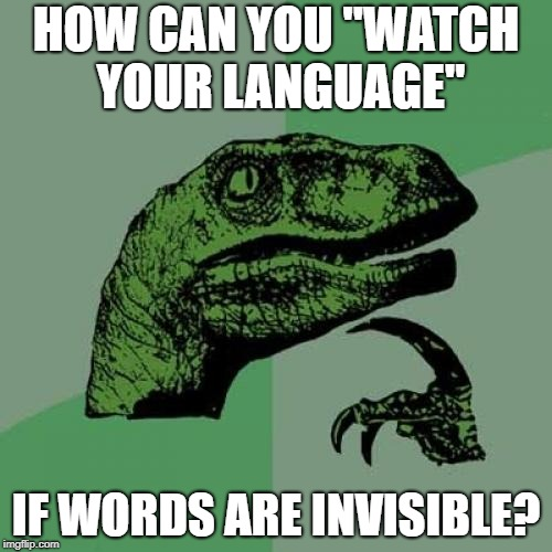 "Philosoraptor Meme | HOW CAN YOU ""WATCH YOUR LANGUAGE"" IF WORDS ARE INVISIBLE? 
