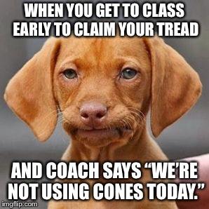 "Thug life dog | WHEN YOU GET TO CLASS EARLY TO CLAIM YOUR TREAD AND COACH SAYS ""WE'RE NOT USING CONES TODAY."" 
