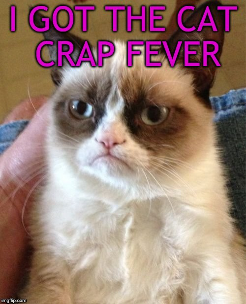 Is this Ted Nugent cat? | I GOT THE CAT CRAP FEVER | image tagged in memes,grumpy cat | made w/ Imgflip meme maker