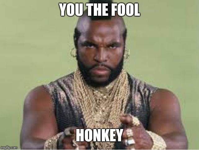 Mr T | YOU THE FOOL HONKEY | image tagged in mr t | made w/ Imgflip meme maker