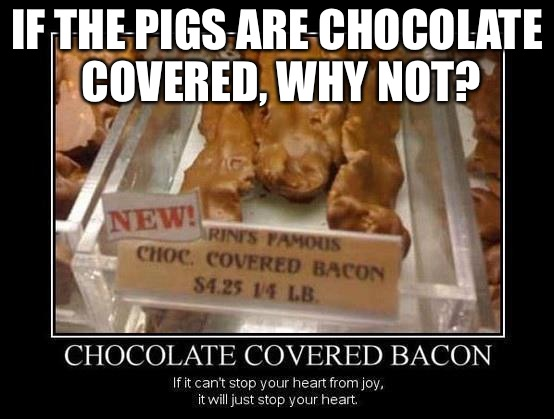 IF THE PIGS ARE CHOCOLATE COVERED, WHY NOT? | made w/ Imgflip meme maker