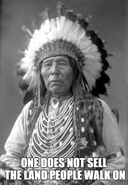Chief Crazy Horse, Oglala Sioux | ONE DOES NOT SELL THE LAND PEOPLE WALK ON | image tagged in native american,chief,head dress,american indian,indian chief,native americans | made w/ Imgflip meme maker