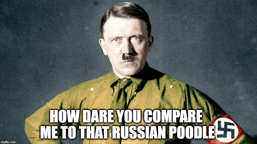 HOW DARE YOU COMPARE ME TO THAT RUSSIAN POODLE | image tagged in adolf hitler | made w/ Imgflip meme maker