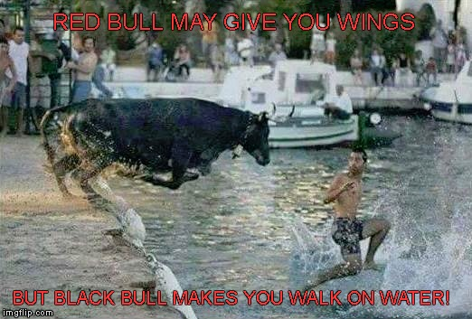 BLACK BULL MAKES YOU WALK ON WATER |  RED BULL MAY GIVE YOU WINGS; BUT BLACK BULL MAKES YOU WALK ON WATER! | image tagged in bull | made w/ Imgflip meme maker