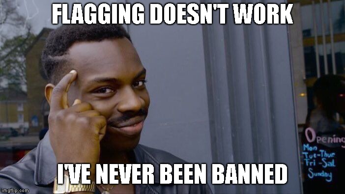 Roll Safe Think About It Meme | FLAGGING DOESN'T WORK I'VE NEVER BEEN BANNED | image tagged in memes,roll safe think about it | made w/ Imgflip meme maker