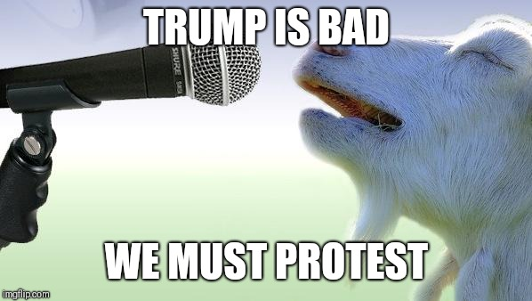 goat singing | TRUMP IS BAD WE MUST PROTEST | image tagged in goat singing | made w/ Imgflip meme maker
