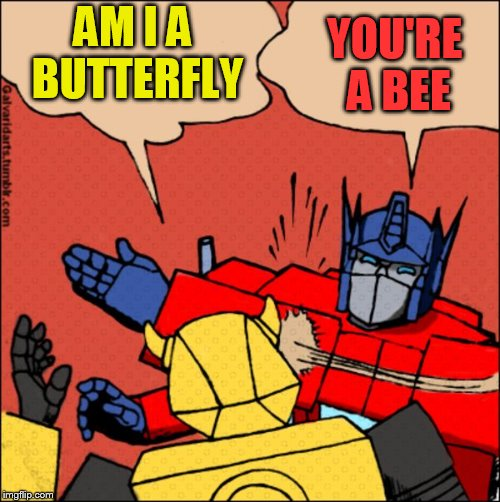 Transformer slap | AM I A BUTTERFLY YOU'RE A BEE | image tagged in transformer slap | made w/ Imgflip meme maker