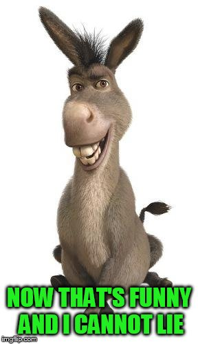 Donkey from Shrek | NOW THAT'S FUNNY AND I CANNOT LIE | image tagged in donkey from shrek | made w/ Imgflip meme maker