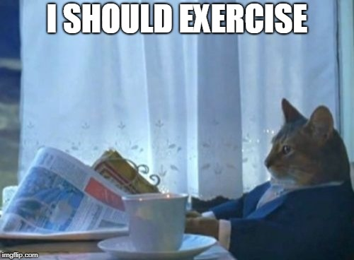 I Should Buy A Boat Cat Meme | I SHOULD EXERCISE | image tagged in memes,i should buy a boat cat,AdviceAnimals | made w/ Imgflip meme maker