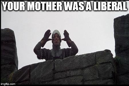 French Taunting in Monty Python's Holy Grail | YOUR MOTHER WAS A LIBERAL | image tagged in french taunting in monty python's holy grail | made w/ Imgflip meme maker