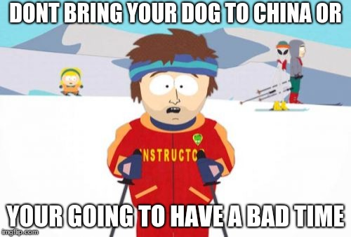 Super Cool Ski Instructor Meme | DONT BRING YOUR DOG TO CHINA OR YOUR GOING TO HAVE A BAD TIME | image tagged in memes,super cool ski instructor | made w/ Imgflip meme maker