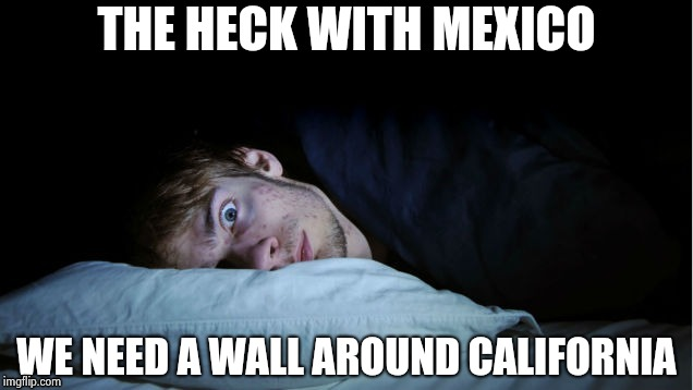Night Terror | THE HECK WITH MEXICO WE NEED A WALL AROUND CALIFORNIA | image tagged in night terror | made w/ Imgflip meme maker