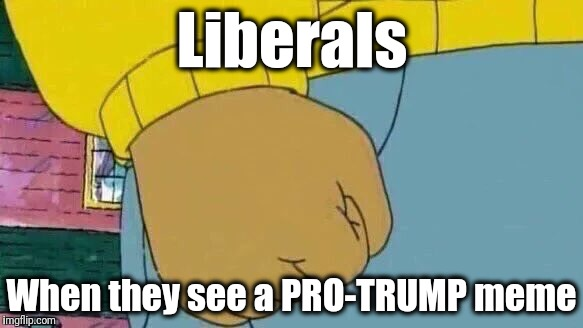 Grrrr! | Liberals When they see a PRO-TRUMP meme | image tagged in memes,arthur fist | made w/ Imgflip meme maker