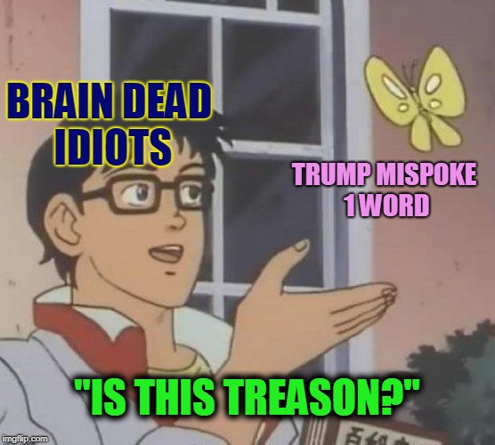 "Is This Treason? | BRAIN DEAD IDIOTS TRUMP MISPOKE 1 WORD ""IS THIS TREASON?"" 