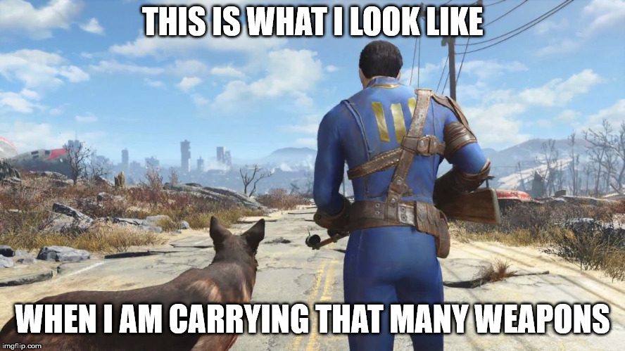 fallout4 | THIS IS WHAT I LOOK LIKE WHEN I AM CARRYING THAT MANY WEAPONS | image tagged in fallout4 | made w/ Imgflip meme maker