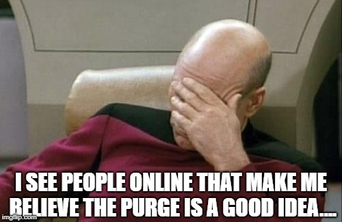Captain Picard Facepalm Meme | I SEE PEOPLE ONLINE THAT MAKE ME BELIEVE THE PURGE IS A GOOD IDEA.... | image tagged in memes,captain picard facepalm | made w/ Imgflip meme maker