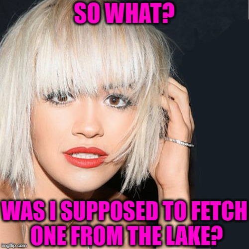 ditz | SO WHAT? WAS I SUPPOSED TO FETCH ONE FROM THE LAKE? | image tagged in ditz | made w/ Imgflip meme maker