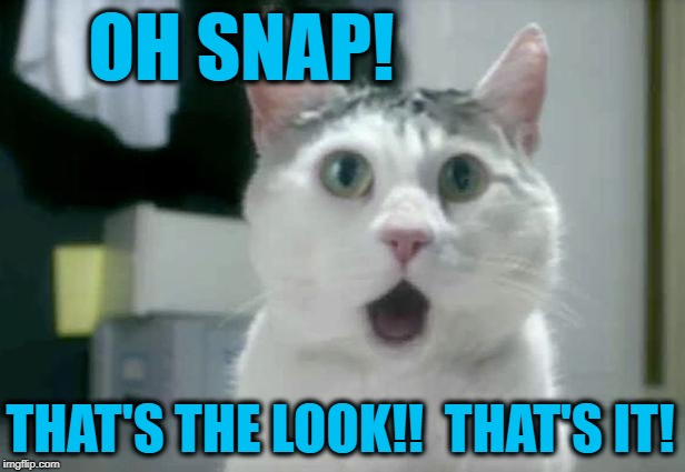 OMG Cat Meme | OH SNAP! THAT'S THE LOOK!!  THAT'S IT! | image tagged in memes,omg cat | made w/ Imgflip meme maker