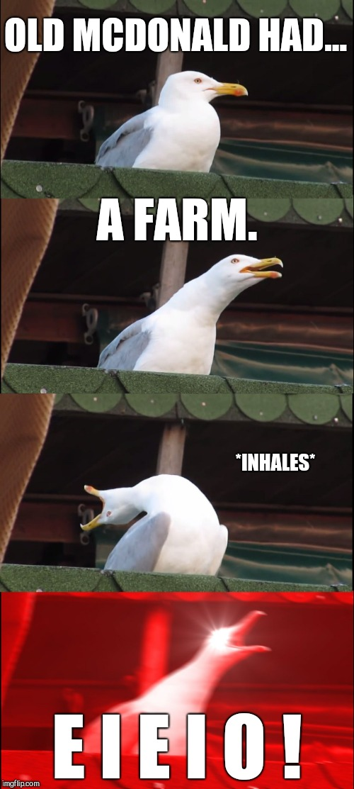 Inhaling Seagull Meme | OLD MCDONALD HAD... A FARM. *INHALES* E I E I O ! | image tagged in memes,inhaling seagull | made w/ Imgflip meme maker