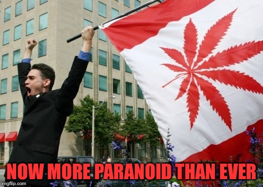Canada Pot Flag | NOW MORE PARANOID THAN EVER | image tagged in canada pot flag | made w/ Imgflip meme maker