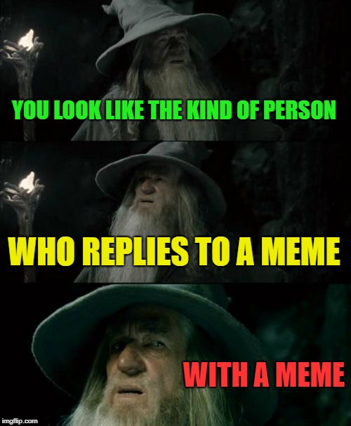 For the love of the meme.... | YOU LOOK LIKE THE KIND OF PERSON WHO REPLIES TO A MEME WITH A MEME | image tagged in memes,confused gandalf,funny,reply,if you know what i mean | made w/ Imgflip meme maker