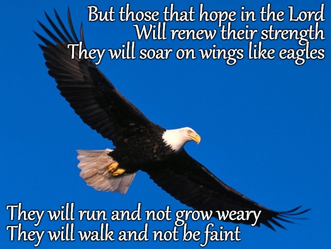 Isaiah 40:31 Soar Like an Eagle |  But those that hope in the Lord; Will renew their strength; They will soar on wings like eagles; They will run and not grow weary; They will walk and not be faint | image tagged in bible,holy bible,holy spirit,bible verse,verse,god | made w/ Imgflip meme maker